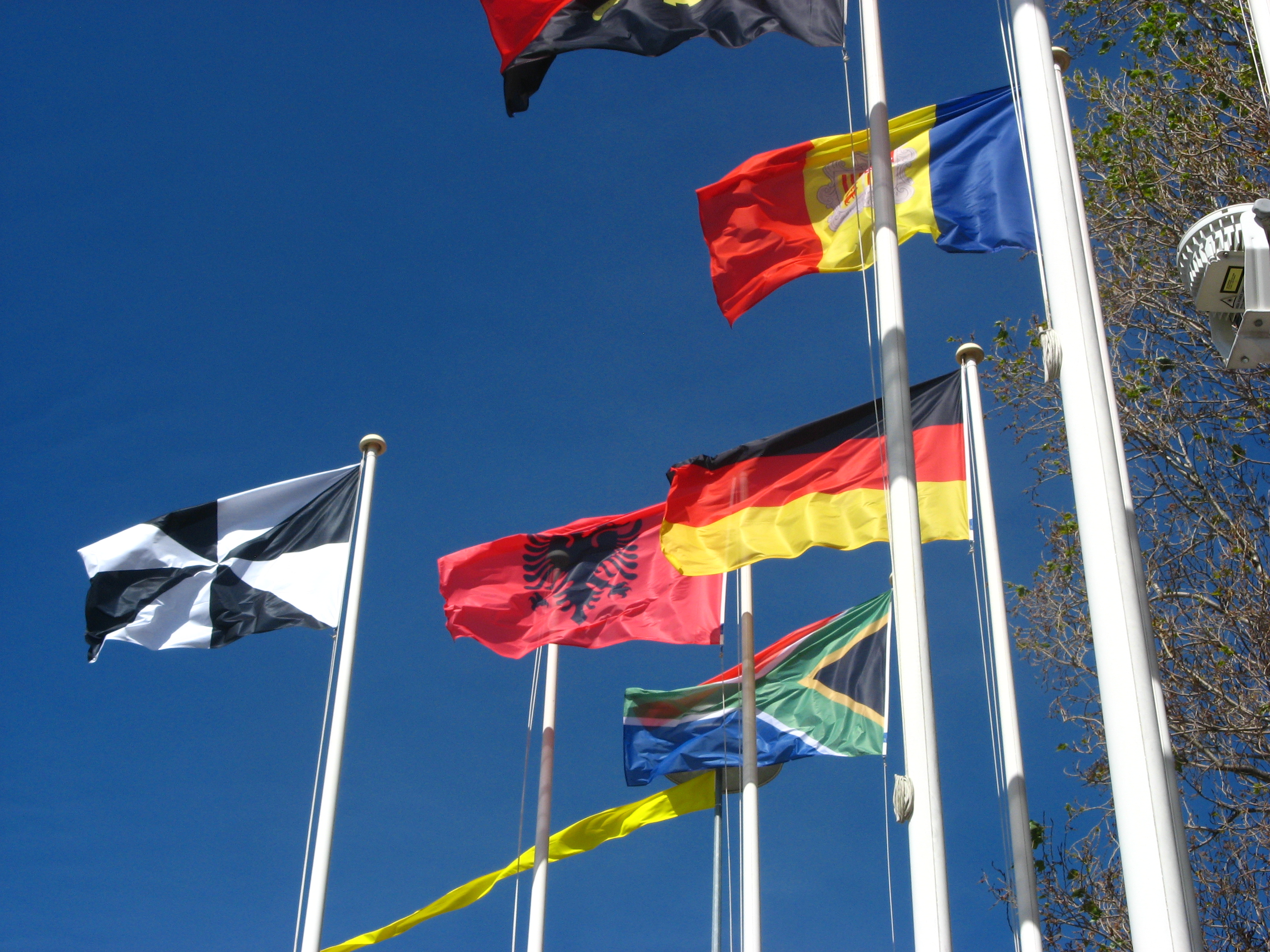 111 Symbolism and the World of Flags